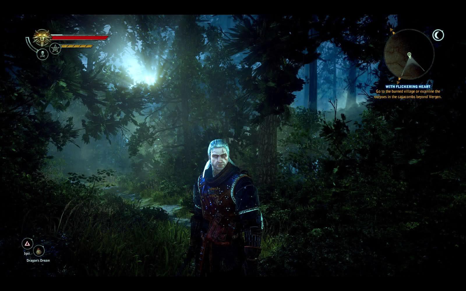 la verdad es que está muy bien el bosque
